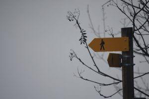 Neuorientierung, der Anfang zu bewusster Lebensgestaltung