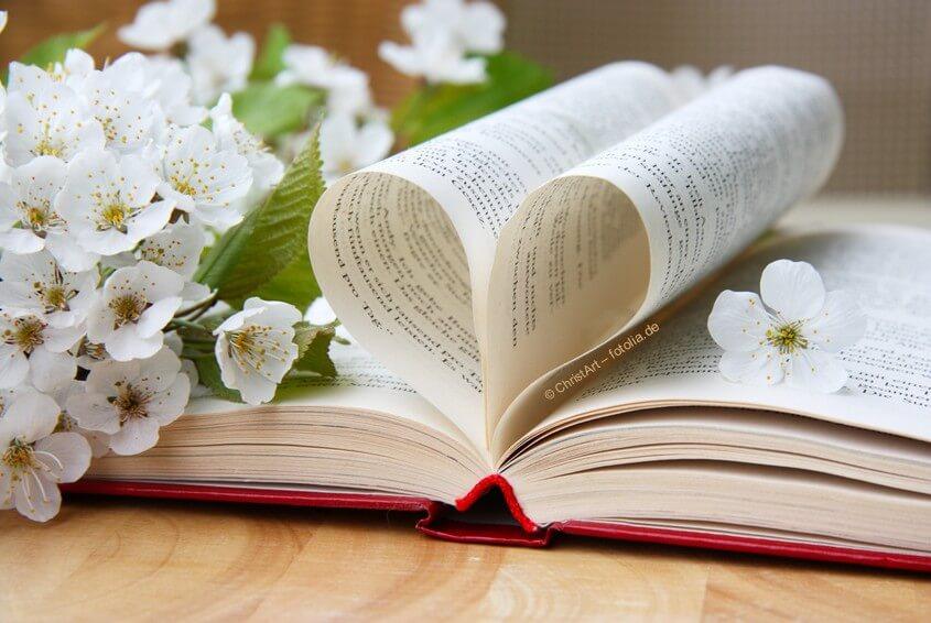 Die Bibel lesen, entdecken und verstehen lernen