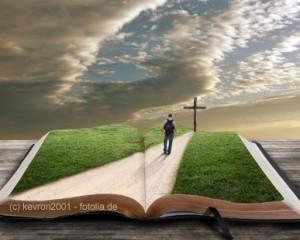 Wo findet man den Sinn des Lebens? Viele Menschen suchen in der Bibel.