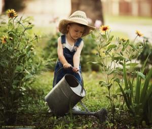 Gartenplanung auf unser Leben übertragen