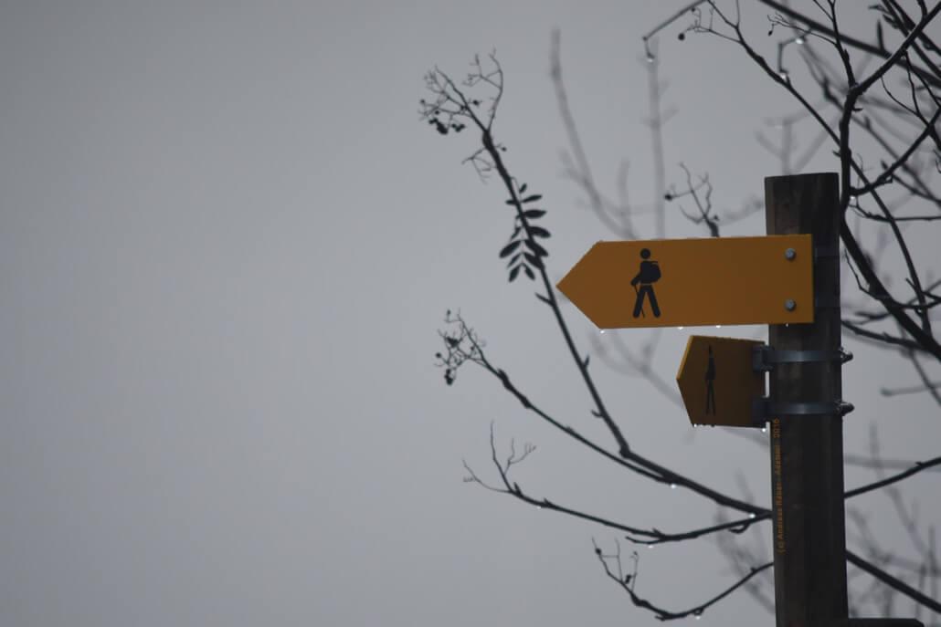 Lebenskrisen überwinden und bewältigen, neue Perspektiven finden