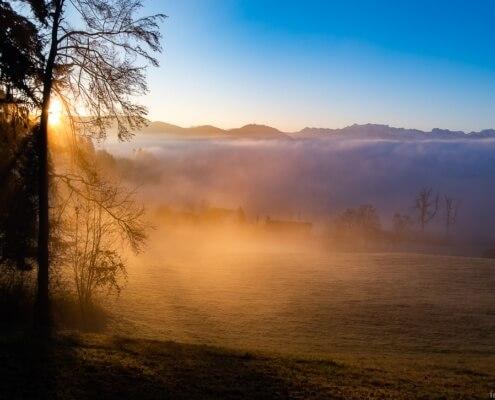 Neuorientierung - Wenn sich der Nebel lichtet und wir immer mehr weitersehen