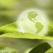 Wissenschaft: Wie funktioniert die Welt?